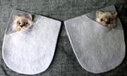 Декоративные карманы. Котята. Новочебоксарск