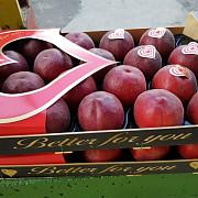 Продаем нектарин Санкт-Петербург