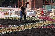 Предоставяем услуги садовников Масловка в Воронеже и садовник в Масловке в области Масловка