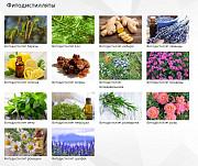 Растительные экстракты, масла, красители для косметических, пищевых и фармацевтических производств Великий Новгород