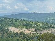 Продам большой ровный земельный участок Сочи Сочи