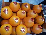 Предлагаем оптовые поставки апельсинов Москва