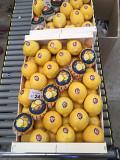 Предлагаем оптовые поставки лимонов Москва